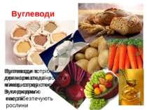Вуглеводи Вуглеводи в організмі людини використовуються як джерело енергії Ву...