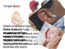 Острів Вухо Пам'ятайте, що вуха легко простудити, тому остерігайтеся протягів...