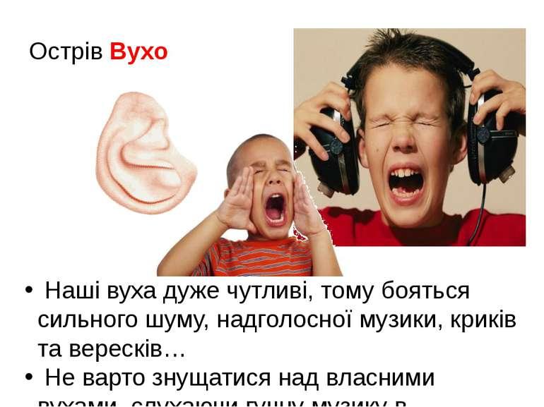Острів Вухо Наші вуха дуже чутливі, тому бояться сильного шуму, надголосної м...