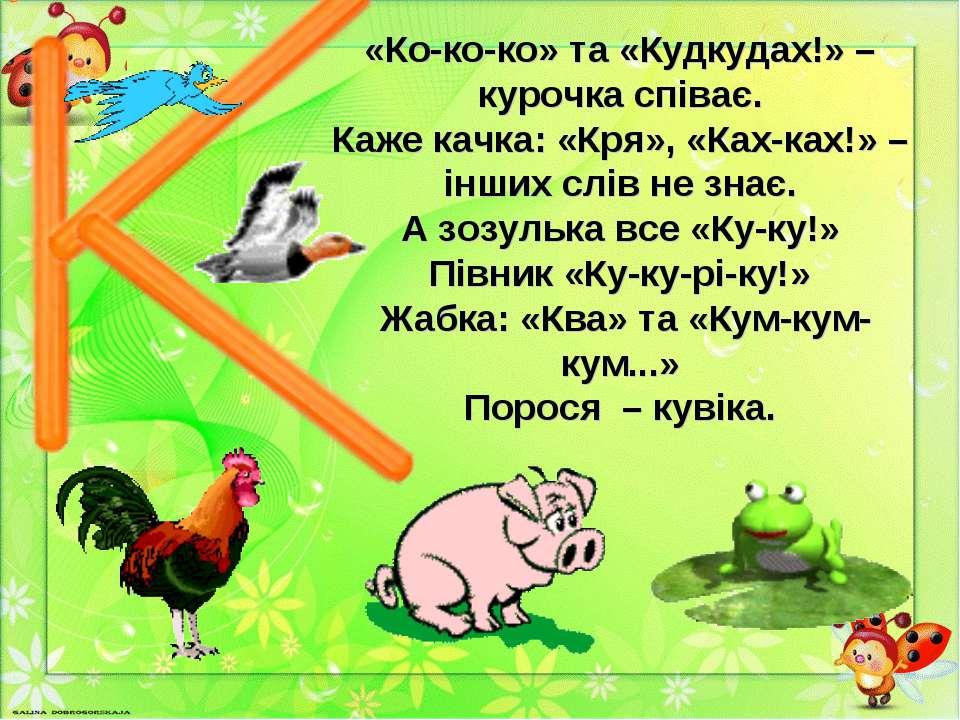 «Ко-ко-ко» та «Кудкудах!» – курочка співає. Каже качка: «Кря», «Ках-ках!» – і...