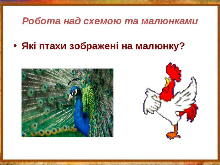 Робота над схемою та малюнками Які птахи зображені на малюнку?