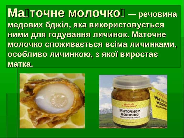 Ма точне молочко — речовина медових бджіл, яка використовується ними для году...
