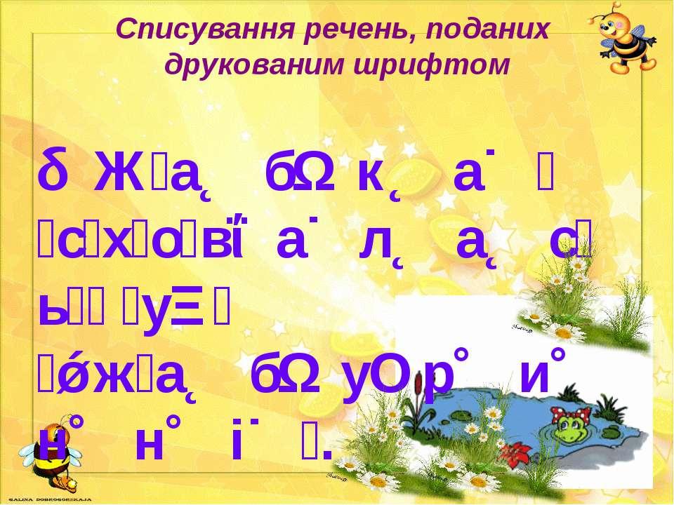 Списування речень, поданих друкованим шрифтом Ж а б к а с х о в а л а с ь у ж...