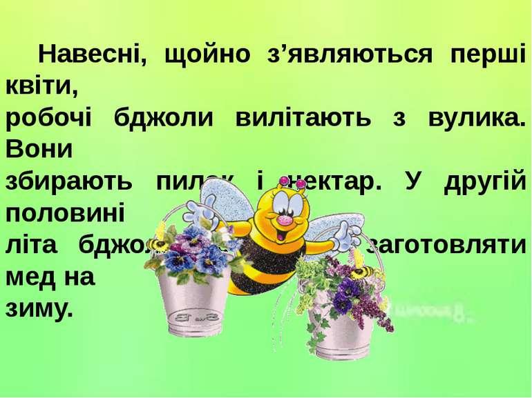 Навесні, щойно з'являються перші квіти, робочі бджоли вилітають з вулика. Вон...