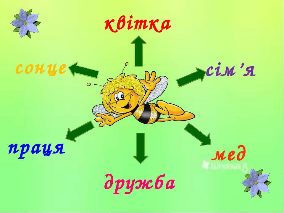 квітка мед сім'я дружба сонце праця
