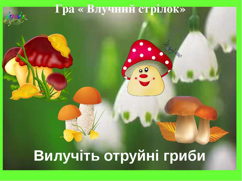 Гра « Влучний стрілок» Вилучіть отруйні гриби