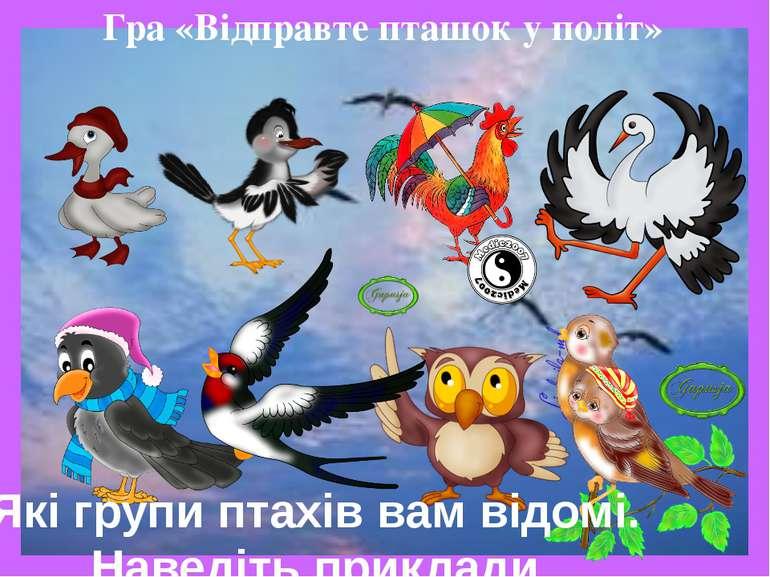 Гра «Відправте пташок у політ» Які групи птахів вам відомі. Наведіть приклади.