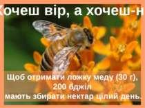 Щоб отримати ложку меду (30 г), 200 бджіл мають збирати нектар цілий день. Хо...