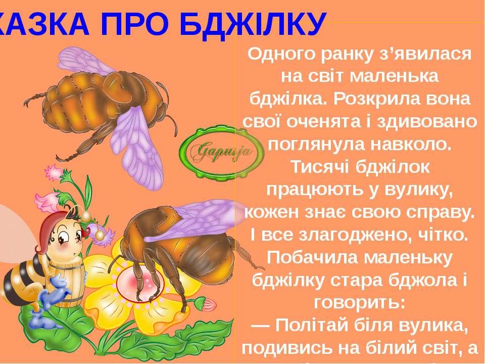 Одного ранку з'явилася на світ маленька бджілка. Розкрила вона свої оченята і...