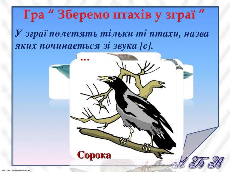 У зграї полетять тільки ті птахи, назва яких починається зі звука [с].