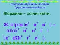 Списування речень, поданих друкованим шрифтом Жоржини – осінні квіти. Ж о р ж...