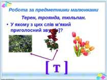 Робота за предметними малюнками Терен, троянда, тюльпан. У якому з цих слів м...