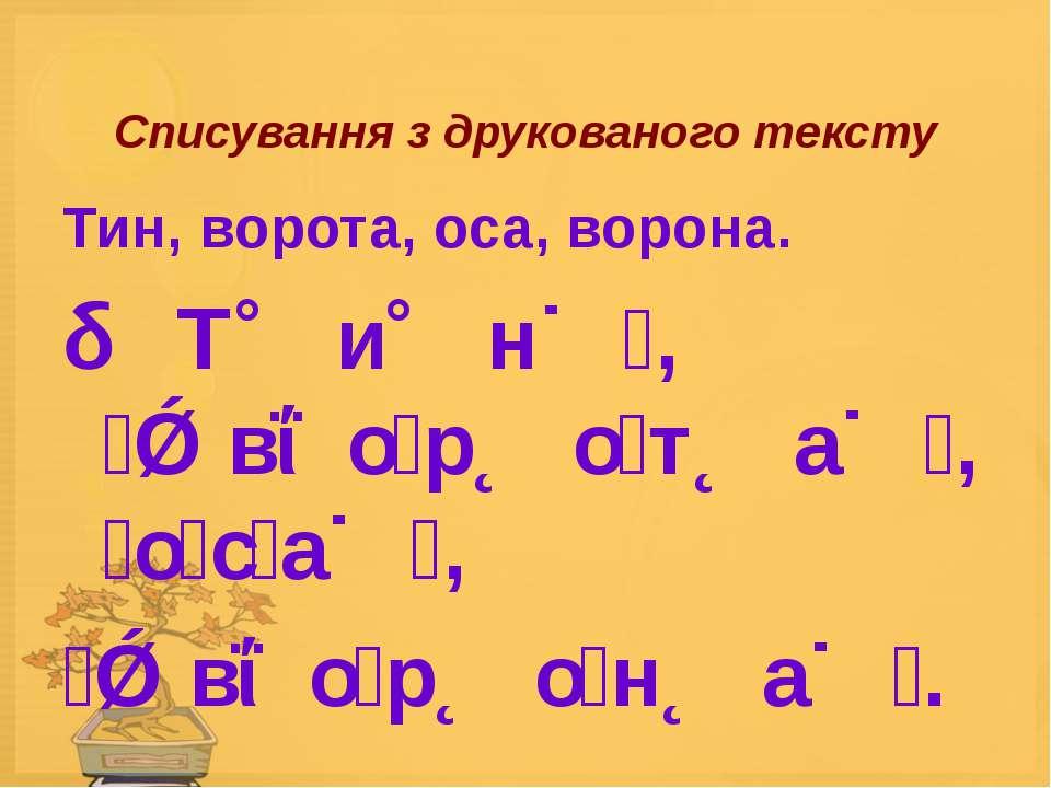 Списування з друкованого тексту Тин, ворота, оса, ворона. Т и н , в о р о т а...