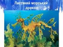 Листяний морський дракон