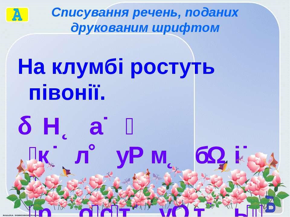 Списування речень, поданих друкованим шрифтом На клумбі ростуть півонії. Н а ...