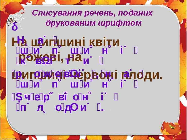 Списування речень, поданих друкованим шрифтом На шипшині квіти рожеві,на шип...