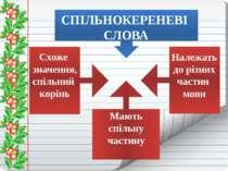 СПІЛЬНОКЕРЕНЕВІ СЛОВА Схоже значення, спільний корінь Належать до різних част...