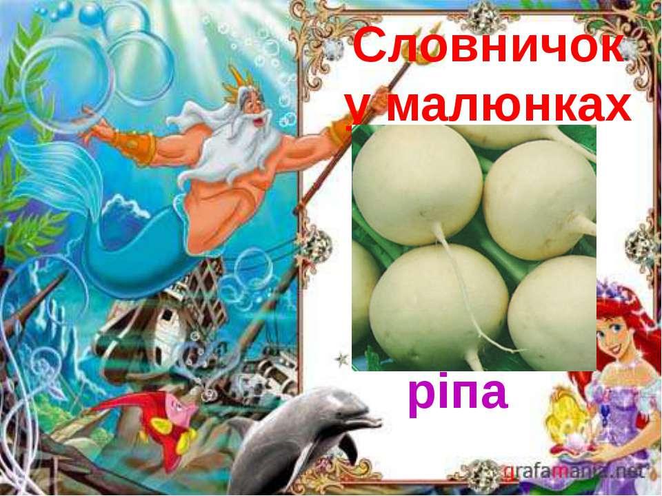 Словничок у малюнках Ріжки ( гриб)