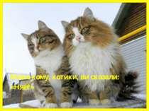 Може кому, котики, ви сказали: «Няв!» Може кому, котики, ви сказали: «Няв!»