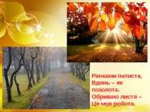Ранками імлиста, Вдень – як позолота. Обриваю листя – Це моя робота.