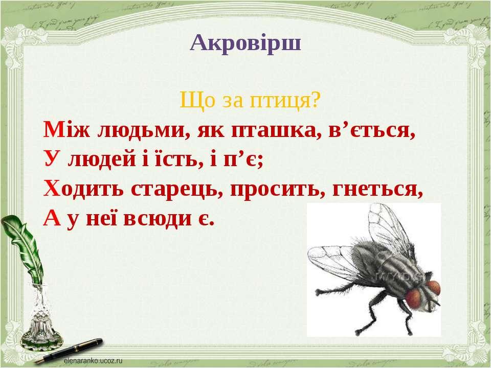 Акровірш Що за птиця? Між людьми, як пташка, в'ється, У людей і їсть, і п'є; ...