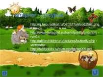 Інтернет – ресурси: http://q.foto.radikal.ru/0702/f7a6fccd256c.png -їжачок ht...