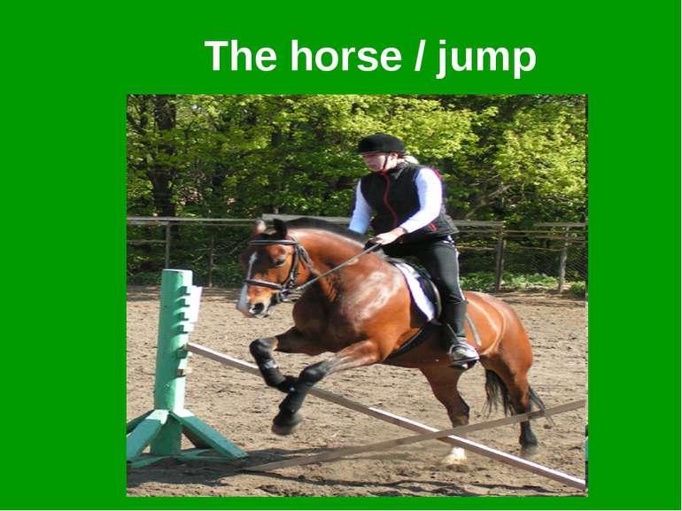The horse / jump