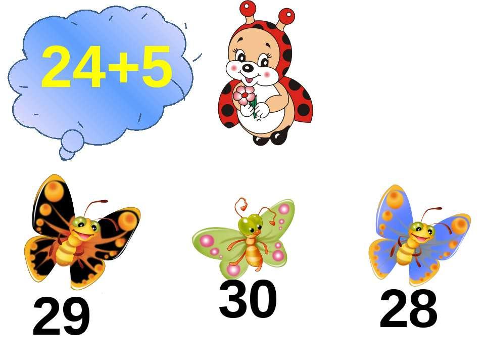 24+5 29 30 28