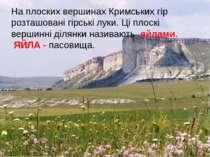 На плоских вершинах Кримських гір розташовані гірські луки. Ці плоскі вершинн...