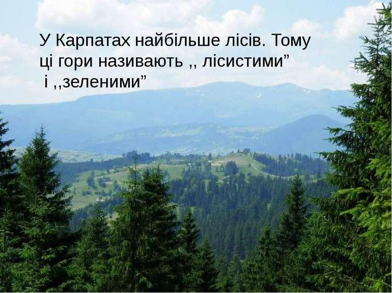 """У Карпатах найбільше лісів. Тому ці гори називають ,, лісистими"""" і ,,зеленими"""""""