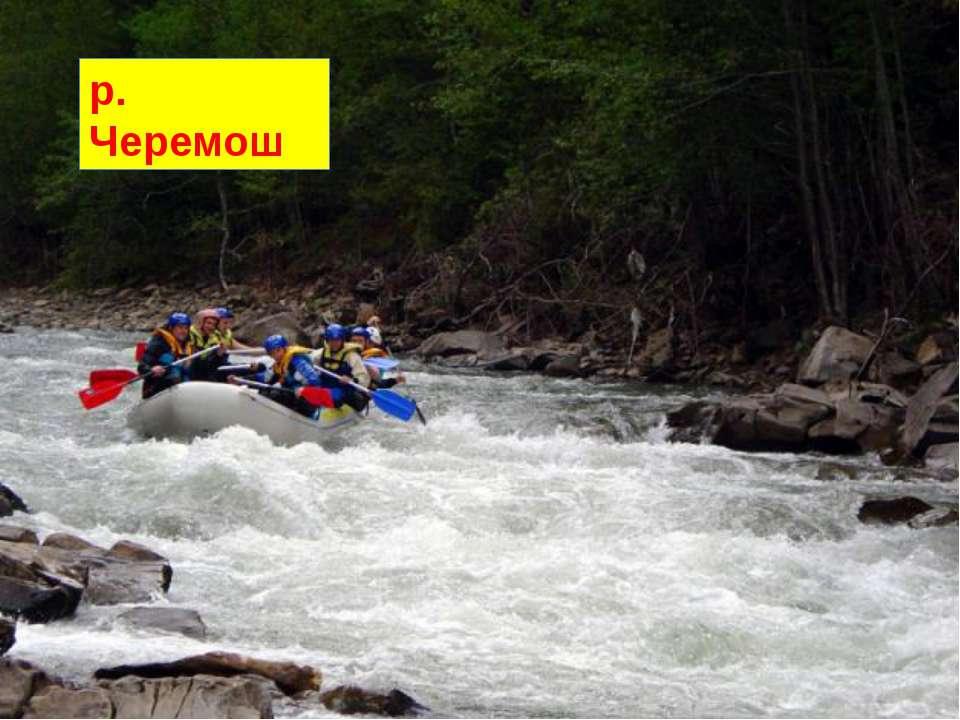 Карпати – місцевість, у якій найбільше річок. З гір тече безліч струмків. р. ...