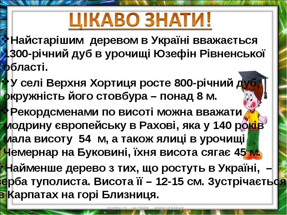 Найстарішим деревом в Україні вважається 1300-річний дуб в урочищі Юзефін Рів...