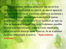ЛЕГЕНДА Стародавня легенда розказує, що коли Ісус Христос був розп'ятий на хр...