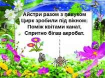 Айстри разом з павуком Цирк зробили під вікном: Поміж квітами канат, Спритно ...