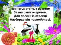 Чорногуз стоїть з букетом За високим очеретом. Для лелеки із столиці Назбирав...