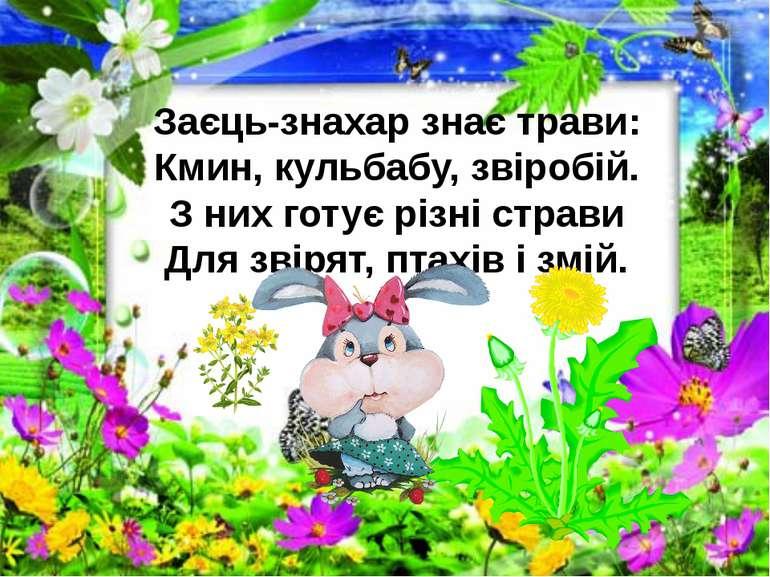 Заєць-знахар знає трави: Кмин, кульбабу, звіробій. З них готує різні страви Д...