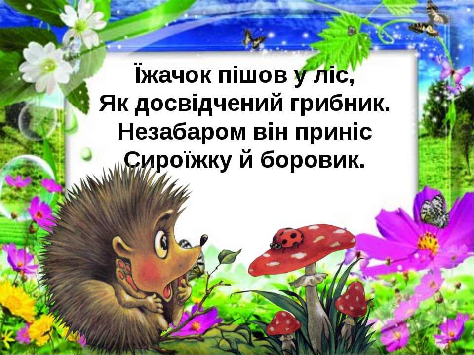 Їжачок пішов у ліс, Як досвідчений грибник. Незабаром він приніс Сироїжку й б...
