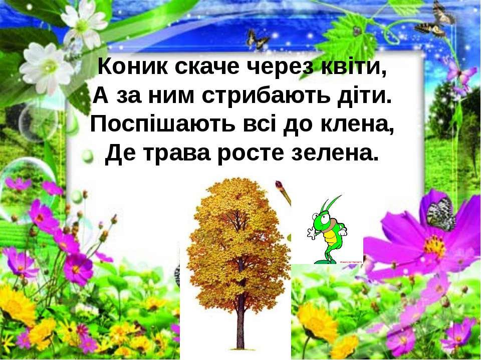 Коник скаче через квіти, А за ним стрибають діти. Поспішають всі до клена, Де...