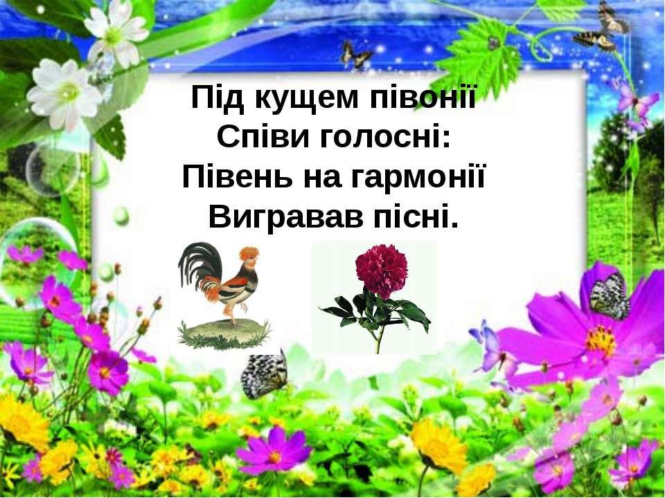 Під кущем півонії Співи голосні: Півень на гармонії Вигравав пісні.