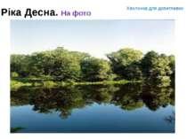 Ріка Десна. На фото Хвилинка для допитливих