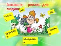 Значення рослин для людини Кисень Їжа Ліки Тканина Деревина Милування