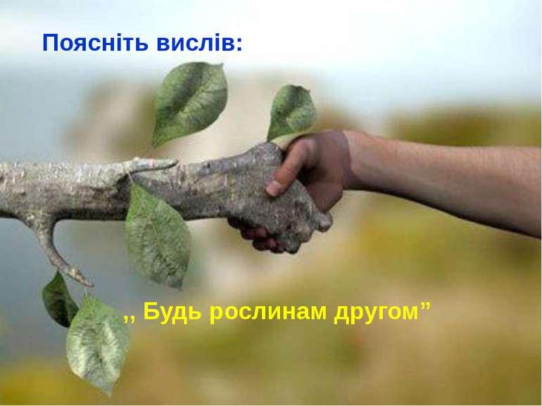 """Поясніть вислів: ,, Будь рослинам другом"""""""
