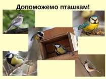 Допоможемо пташкам!