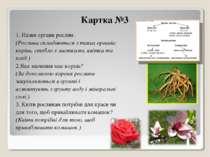 Картка №3 1. Назви органи рослин. (Рослини складаються з таких органів: корін...