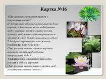 Картка №16 1.Що допомагає рослинам вижити у посушливих місцях? (У посушливих ...