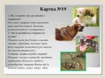 Картка №19 1. Що спільного між рослинами і тваринами? (Рослини і тварини живі...