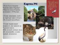 Картка №4 1.Коли була створена Червона книга України? (Червона книга України ...