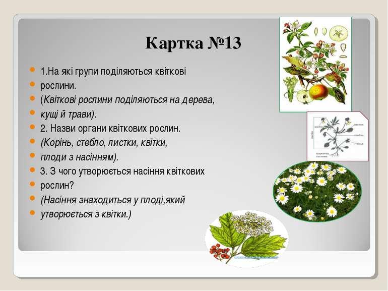 Картка №13 1.На які групи поділяються квіткові рослини. (Квіткові рослини под...