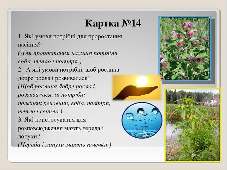 Картка №14 1. Які умови потрібні для проростання насіння? (Для проростання на...