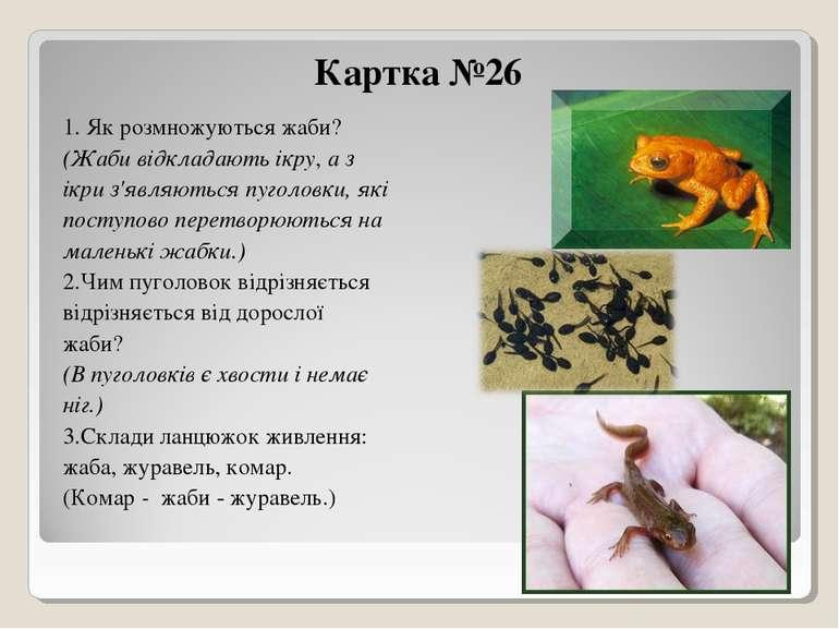 Картка №26 1. Як розмножуються жаби? (Жаби відкладають ікру, а з ікри з'являю...